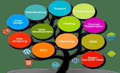 Web & Domains